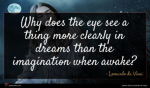 Leonardo da Vinci quote : Why does the eye ...