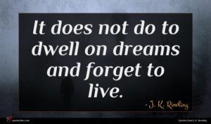 J. K. Rowling quote : It does not do ...