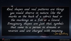 Jim Woodring quote : Real shapes and real ...