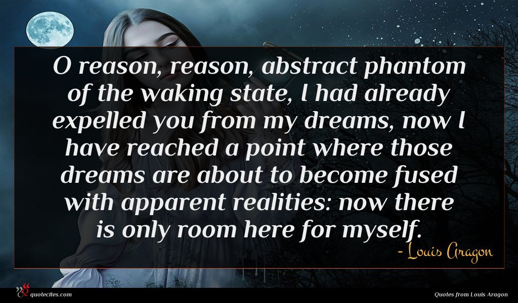 O reason, reason, abstract phantom of the waking state, I had already expelled you from my dreams, now I have reached a point where those dreams are about to become fused with apparent realities: now there is only room here for myself.