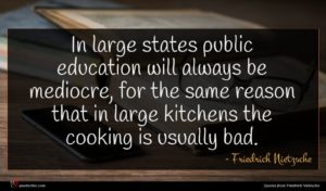 Friedrich Nietzsche quote : In large states public ...