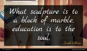 Joseph Addison quote : What sculpture is to ...