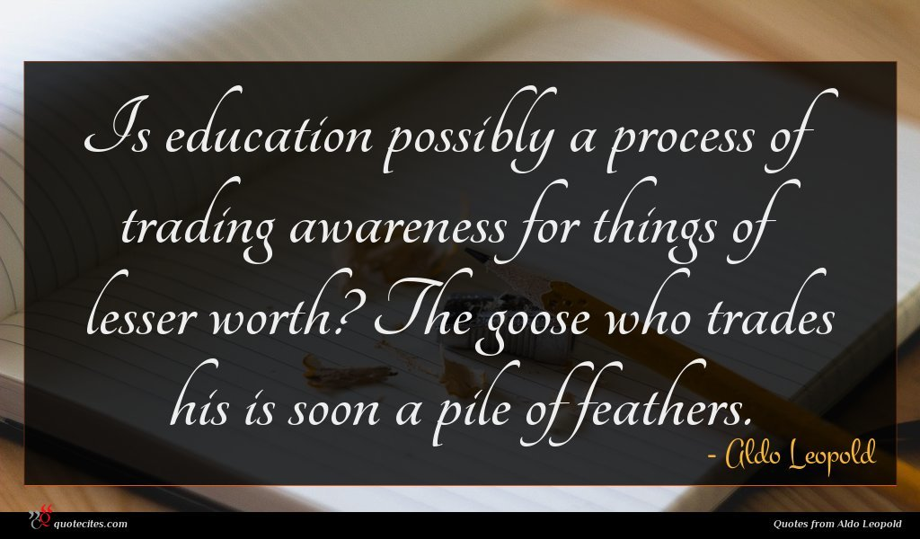 Is education possibly a process of trading awareness for things of lesser worth? The goose who trades his is soon a pile of feathers.
