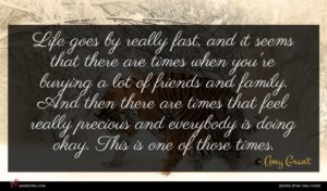 Amy Grant quote : Life goes by really ...