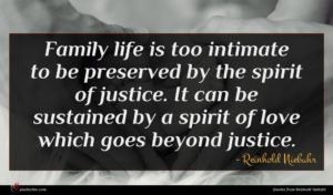 Reinhold Niebuhr quote : Family life is too ...