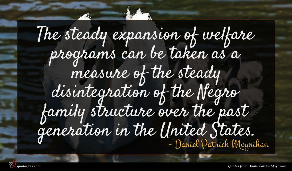 The steady expansion of welfare programs can be taken as a measure of the steady disintegration of the Negro family structure over the past generation in the United States.