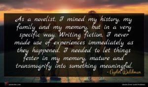 Ayelet Waldman quote : As a novelist I ...