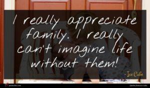 Ice Cube quote : I really appreciate family ...
