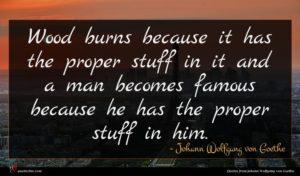 Johann Wolfgang von Goethe quote : Wood burns because it ...