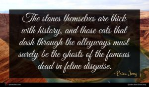 Erica Jong quote : The stones themselves are ...