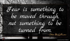 Peter McWilliams quote : Fear is something to ...