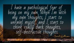 David Walliams quote : I have a pathological ...