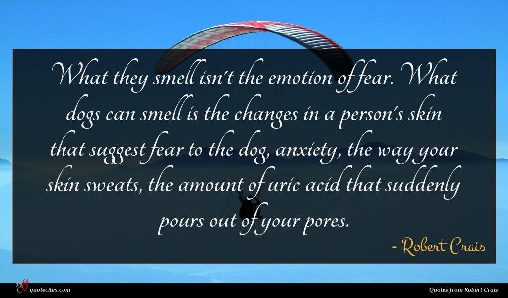 What they smell isn't the emotion of fear. What dogs can smell is the changes in a person's skin that suggest fear to the dog, anxiety, the way your skin sweats, the amount of uric acid that suddenly pours out of your pores.