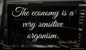 Hjalmar Schacht quote : The economy is a ...