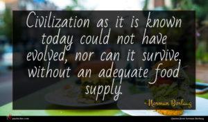 Norman Borlaug quote : Civilization as it is ...