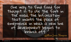 William Irwin Thompson quote : One way to find ...