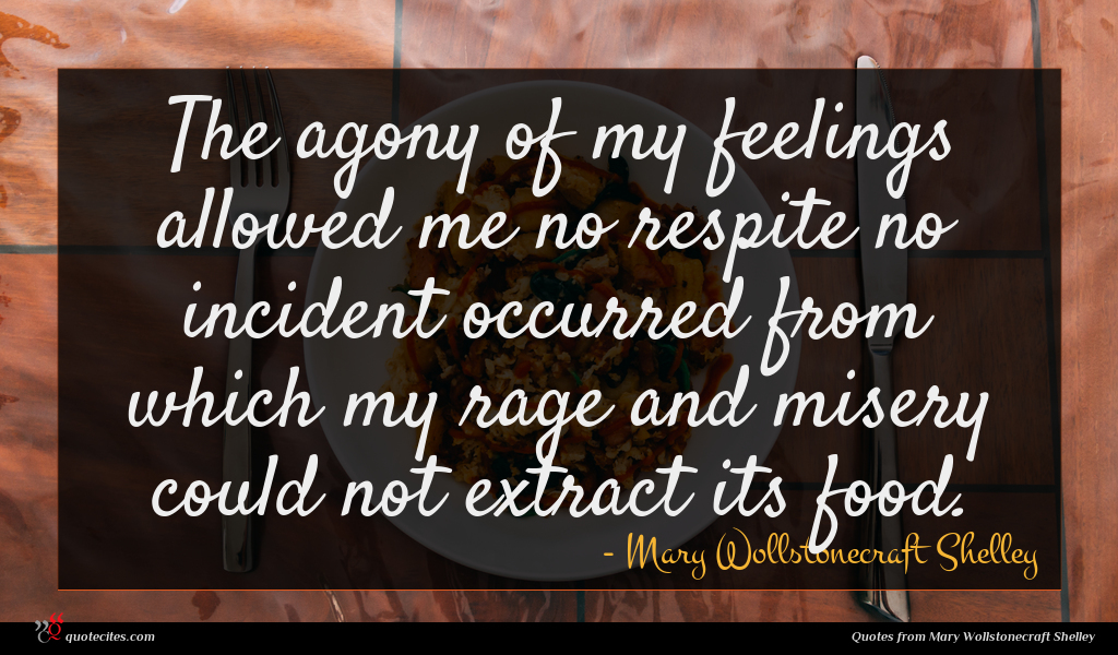 The agony of my feelings allowed me no respite no incident occurred from which my rage and misery could not extract its food.