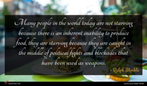 Ralph Merkle quote : Many people in the ...