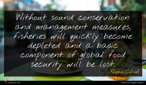 Sigmar Gabriel quote : Without sound conservation and ...