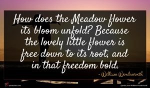 William Wordsworth quote : How does the Meadow ...