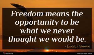 Daniel J. Boorstin quote : Freedom means the opportunity ...