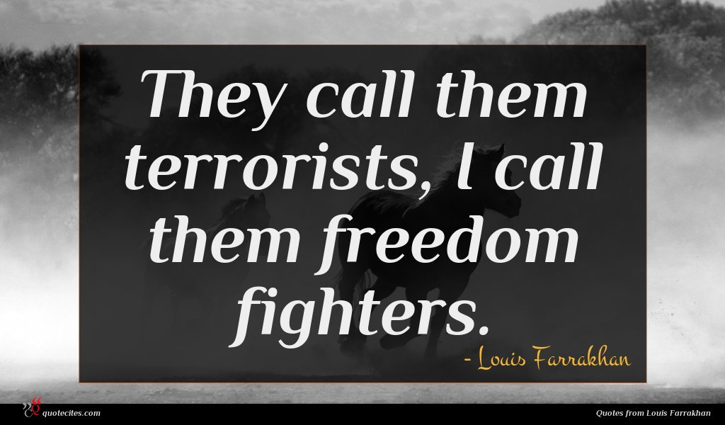 They call them terrorists, I call them freedom fighters.