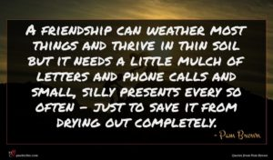 Pam Brown quote : A friendship can weather ...