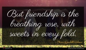 Oliver Wendell Holmes quote : But friendship is the ...