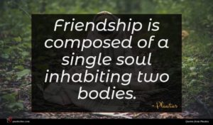 Plautus quote : Friendship is composed of ...