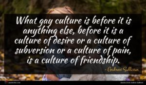 Andrew Sullivan quote : What gay culture is ...