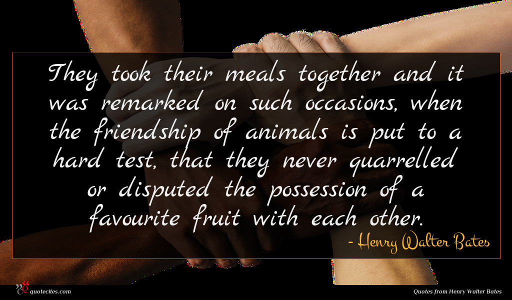 They took their meals together and it was remarked on such occasions, when the friendship of animals is put to a hard test, that they never quarrelled or disputed the possession of a favourite fruit with each other.