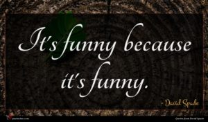 David Spade quote : It's funny because it's ...
