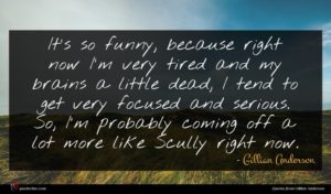 Gillian Anderson quote : It's so funny because ...