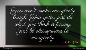 Colin Quinn quote : You can't make everybody ...