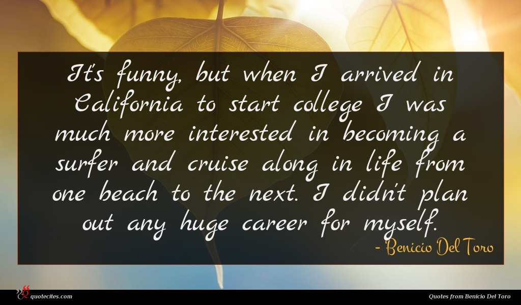 It's funny, but when I arrived in California to start college I was much more interested in becoming a surfer and cruise along in life from one beach to the next. I didn't plan out any huge career for myself.