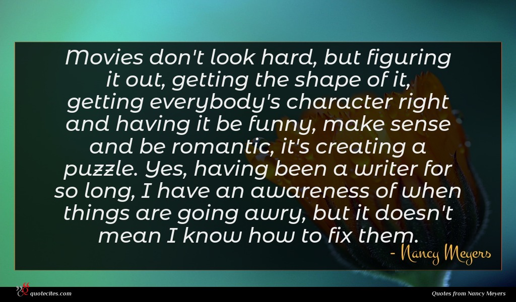 Movies don't look hard, but figuring it out, getting the shape of it, getting everybody's character right and having it be funny, make sense and be romantic, it's creating a puzzle. Yes, having been a writer for so long, I have an awareness of when things are going awry, but it doesn't mean I know how to fix them.