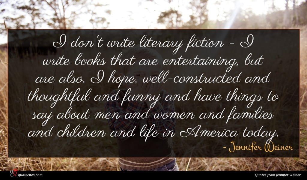 I don't write literary fiction - I write books that are entertaining, but are also, I hope, well-constructed and thoughtful and funny and have things to say about men and women and families and children and life in America today.