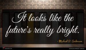 Michael P. Anderson quote : It looks like the ...