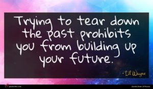 Lil Wayne quote : Trying to tear down ...