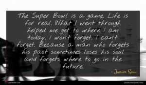 Junior Seau quote : The Super Bowl is ...