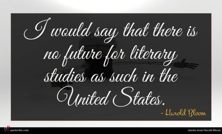 I would say that there is no future for literary studies as such in the United States.