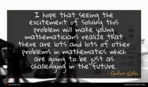 Andrew Wiles quote : I hope that seeing ...