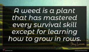 Doug Larson quote : A weed is a ...