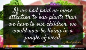 Luther Burbank quote : If we had paid ...