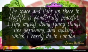 Jeremy Northam quote : The space and light ...