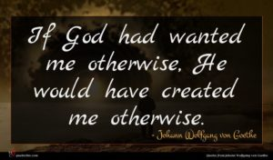 Johann Wolfgang von Goethe quote : If God had wanted ...