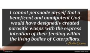 Charles Darwin quote : I cannot persuade myself ...