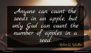 Robert H. Schuller quote : Anyone can count the ...