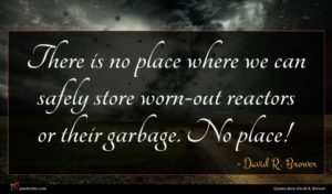 David R. Brower quote : There is no place ...