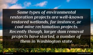 Matt Gonzalez quote : Some types of environmental ...